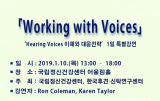Working with Voices poster1